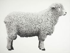 Jonathan Delafield Cook Porfolio at Purdyhicks Gallery