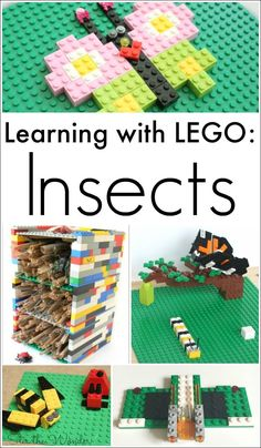 Learning about insects can be made fun and hands-on using LEGO!
