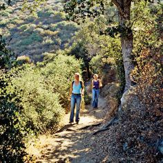 Sam Merrill Trail, Altadena, CA