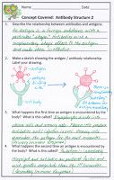 Science Stuff: Teaching About the Immune System