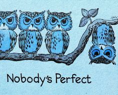 Funny Owl Pictures Wallpaper