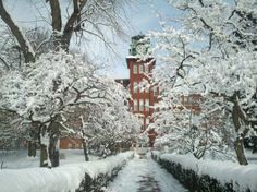 Hamilton Clock Towers after a snow storm. Lancaster, Pa  • Repinned by The Lancaster List • www.thelancasterlist.com
