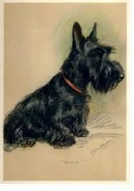 Image result for scotty dog tattoo