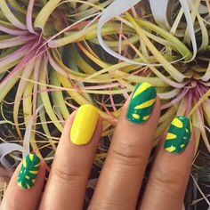 Nails inspired by the leaves of Monstera deliciosa or the Swiss cheese plant. by kitoffkilter