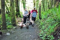 """6 """"Unknown"""" Dog-friendly Trails Near Seattle from You Did What With Your Weiner"""