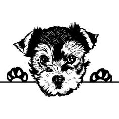 "Awesome ""Yorkshire terrier dog"" info is readily available on our website. Yorkshire Terrier Puppies, Terrier Dogs, Cute Dogs Breeds, Dog Breeds, Yorkie Puppy, Chihuahua, Mexican Design, Dog Silhouette, Teacup Puppies"