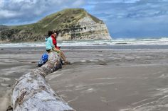 11 Mahia Peninsula Must-Dos - NZ Pocket Guide New Zealand Travel Guide New Zealand Beach, Visit New Zealand, Holiday Park, Beach Holiday, Road Trip Theme, Road Trips, New Zealand Adventure, New Zealand Travel Guide, Beach Cafe