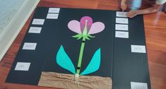 School Resources - Science: Flower Anatomy 3D project Plant Experiments, Science Experiments Kids, Science Education, Plant Projects, 3d Projects, Science Projects, Parts Of A Flower, Parts Of A Plant, Flower Anatomy