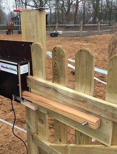 Die 118 Besten Bilder Von Reiten Stall Equestrian Equine