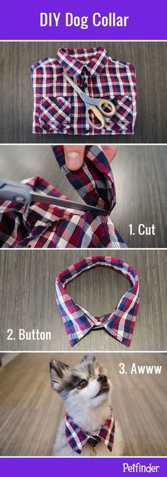 "Fun DIY dog collar idea: trim the collar off a child-sized button-down shirt to make a cute collar for your pup. It's a great way to ""dress up your dog without making him wear clothes!"