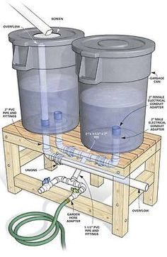 Living green...Recycle rain water for your garden.