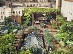 love the greenery + atrium-like skylight in an built up urban space