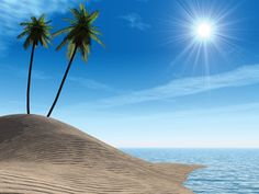 Sea coast. Palm - tree at island and bright sun