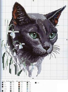 cats Scheme cross