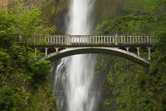 Visitors can take a short trail up the hill to the bridge to get a close-up look at the falls. Cheap Wallpaper, More Wallpaper, Printable Animal Pictures, Multnomah Falls Oregon, Natural Scenery, High Quality Wallpapers, Buying Wholesale, Wide Angle, Trip Planning
