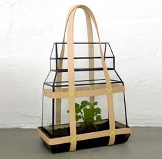 Greenhous-To-Go: #Fashion-forward Portable #terrarium #greenhouse with Prada-like #style