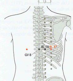 12 puntos de acupresión eficaz para aliviar la cadera y el dolor de espalda baja  La cadera y el dolor de espalda baja son quejas comunes entre los adultos mayores y hay una amplia variedad de causas de la cadera y el dolor de espalda subyacente. Aparte de las piernas, las caderas son las…