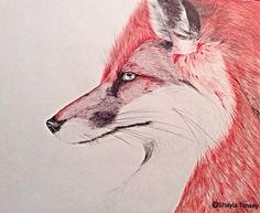 Ink fox by Shayla Tansey Original Artwork, Fox, Sketches, Drawings, Painting, Animals, Animales, Animaux, Painting Art