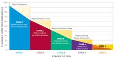 Learn about chronic kidney disease stages