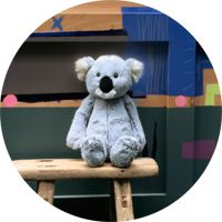 peluche-koala
