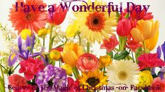 Flower peonies hydrangea bouquet vase purple wall hd wallpaper - Good Morning On Pinterest Have A Great Day Day Quotes