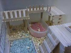 Image result for dwarf hamster popsicle tower