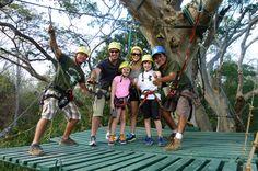Things to do in Tamarindo, Costa Rica (Guanacaste Region) | Ziplining
