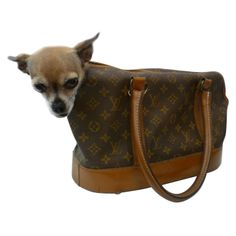 Louis Vuitton Monogram Canvas Dog Carrier Purse Bags For