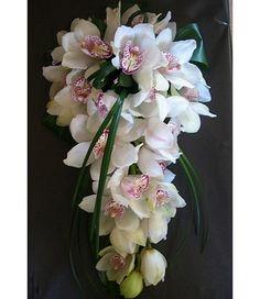 cymbidium-orchid-bri