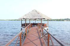 Voyage au Gabon : Port Gentil & Le Parc de Loango – The Foxtrotter