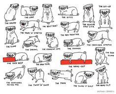 mycool – moda, música, arte, cinema e cool hunting » Blog Archive » Chegou a hora dos pugs