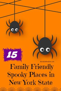 15 Family Friendly Spooky Places in New York State Halloween Cocktails, Halloween 2020, Halloween Party, Scary Decorations, Halloween Decorations, Places In New York, Spooky Places, Scary Costumes, Halloween Trick Or Treat