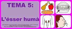 http://lacasetaespecial.blogspot.com.es/2015/02/lesser-huma.html   La Caseta, un lloc especial: L'ésser humà