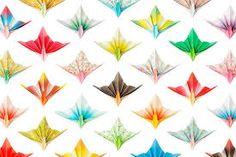 bird paper - Google Search