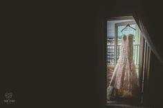 Nicole & Chris' Florida Aquarium Wedding - Worldwide & Local Wedding Photographers based in the Tampa, Florida area.