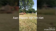KiekMaarFf'm vlog #4 Hooien