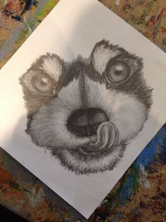 Tried to sketch a red panda but it looks more like a dog.. Ha I tried.