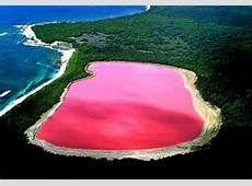 Pink Lake Australia, Pink River, World, Outdoor Decor, Water, Pink Lake, Gripe Water, The World