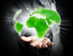 A sustentabilidade como ativo de valor