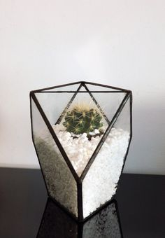 Geometric Terrarium for air plant or by WhiteLiesJewelry on Etsy