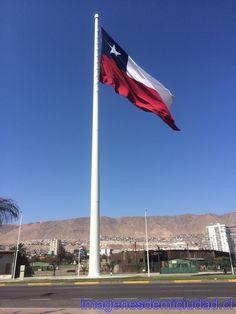 Bandera Bicentenario Antofagasta