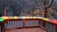 Christmas Lights Encased in Snow After Today's Snowstorm in Chicago http://ift.tt/2h8SeEX