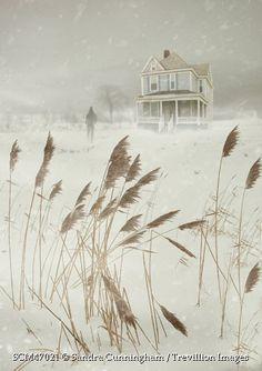 Trevillion Images - man-in-snow-storm-by-large-house