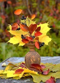 Autumn Lights, Big Photo, Still Life, Bouquet, Marvel, Leaves, Halloween, Spring, Plants