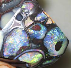 Koroit Nut Opal