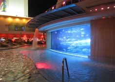 The One Place In Nevada That Lets You Slide Through A Shark Tank