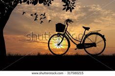 Bicycle silhouette  on road and sunset background  - stock photo