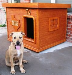 TJ - Texas:  several years of being tried and tested, this dog house has been proven to be the most comfortable and the safest home you can build for your beloved dog.