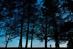 Silhouette of couple holding hands in forest. Blue sky. Trees. Halifax, Nova Scotia, Canada. Jeff Cooke Photography. 14 Engagement Photos That Will Make You Fall In Love With Nature