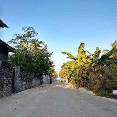 Streets of Thinadhoo. Maldives, Sidewalk, Island, Street, Places, Instagram, The Maldives, Side Walkway, Walkway
